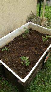 Atelier jardin à la micro-crèche de Chazelles